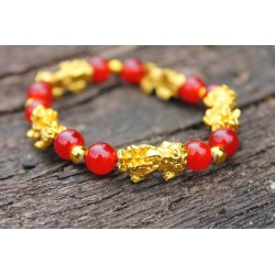 Feng Shui Pi Xiu Armband Karneol Perlen Geschenk, Wohlstand, Glück und Reichtum